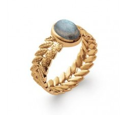Tropical Leaves Labradorite - Gold-Plated Ring