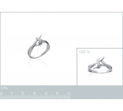 Intertwined - Silver Ring-alt