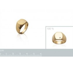 Signet - Zirconia - Gold-Plated Ring-alt